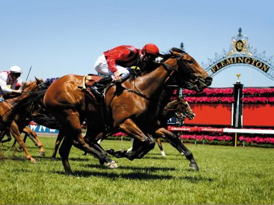 Melbourne Cup Limo Hire